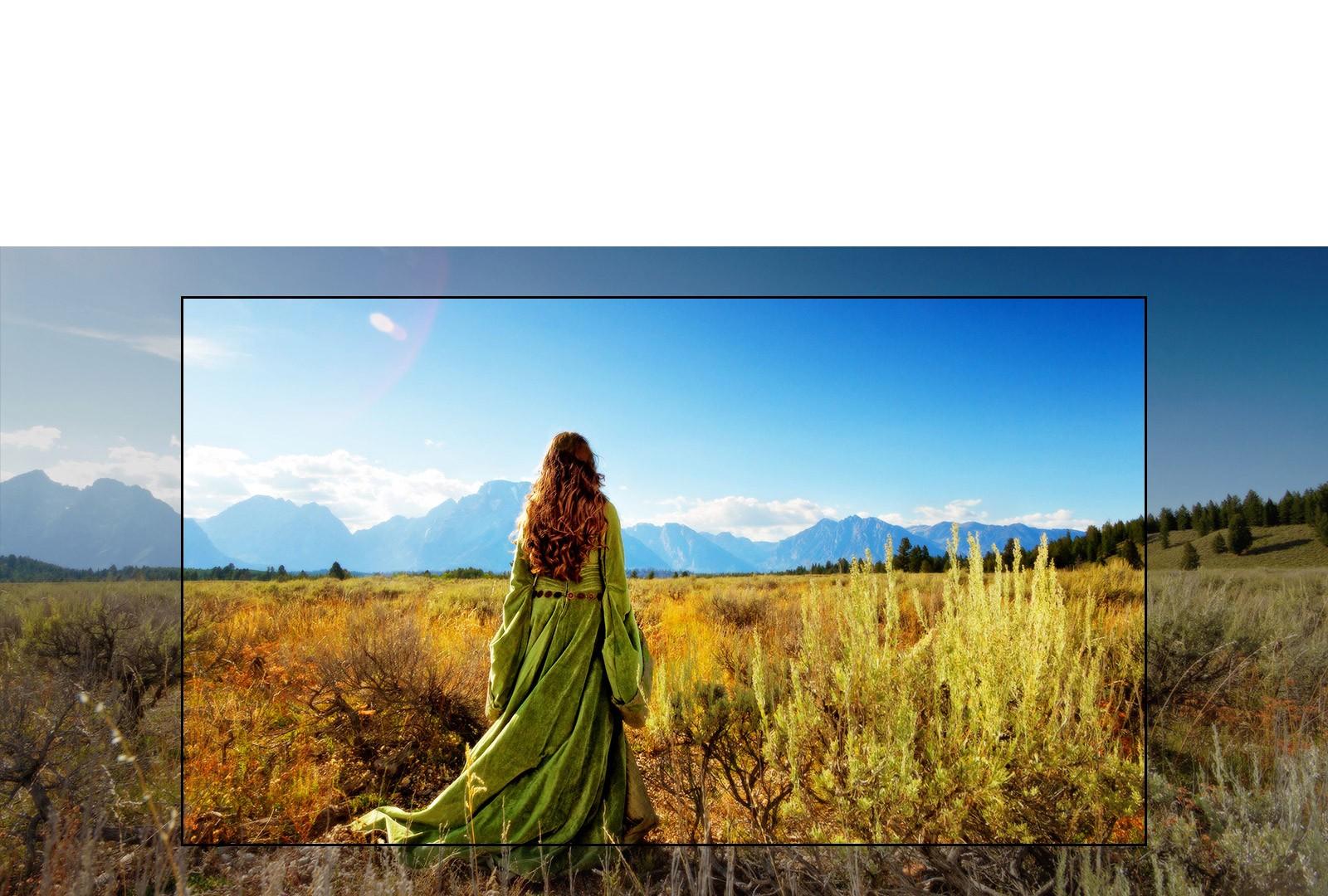 Transforme a sua sala e sinta-se na tela do seu filme preferido!